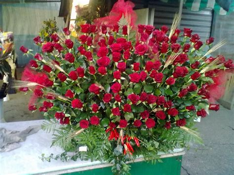 piante e fiori pin piante e fiori da balcone perenni o resistenti quali