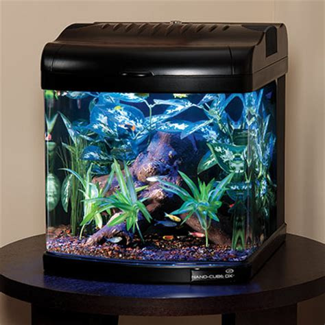 beleuchtung nano aquarium jbj lighting nano cube next generation led aquariums