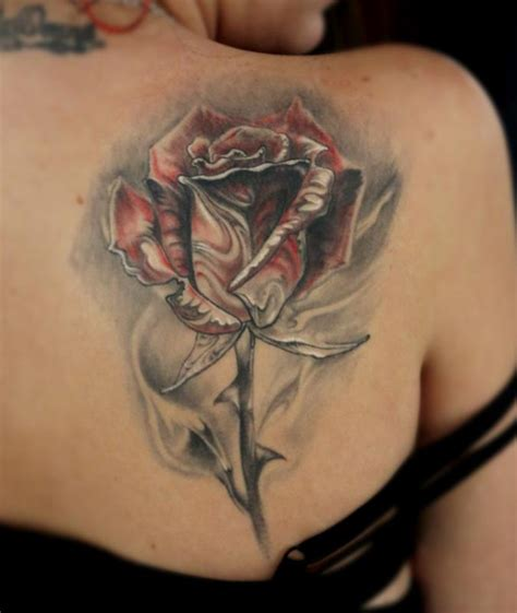 tattoo on shoulder healing healed rose by stefano alcantara tattoos