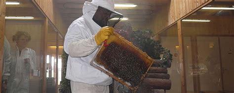 la grange aux abeilles estivareilles miellerie la grange aux abeilles