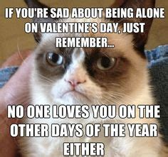 angry valentines day quotes 1000 images about best of grumpy cat on