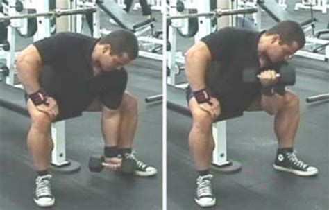 spider curls bracing upper body against an incline bench blast your biceps how to add 2 inches to your arms in