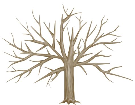 bare tree template cliparts co