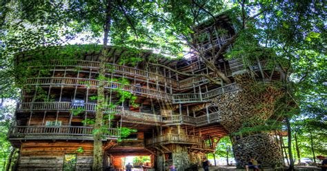 world s biggest tree house this is the world s largest treehouse mtl blog