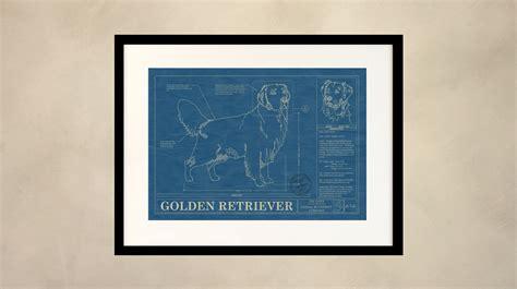 golden retriever blueprint home page animal blueprint company