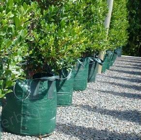 promo o8ii 263i 3o4 penjual planter bag di jogja planter