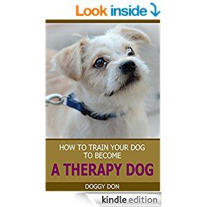 how to your to become a therapy for dummies how to your to become a therapy how to