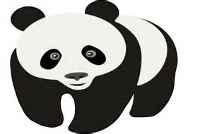 Panda Outline Drawing by Trace And Draw An Image In Fireworks