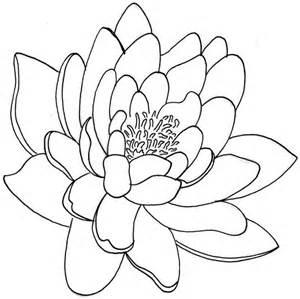 Simple Lotus Flower Drawing Outlines Of Chrysanthemum Blank Canvas