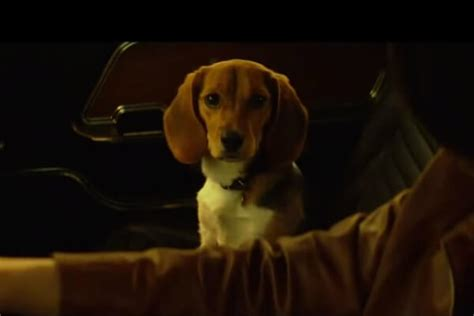 wick puppy keanu reeves avenges his in wick trailer wow247