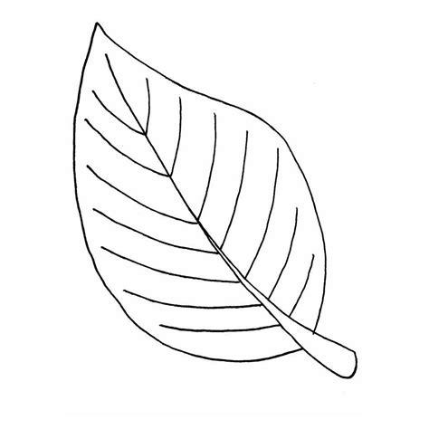 flores de hojas para imprimir dibujos de hojas de flores para colorear