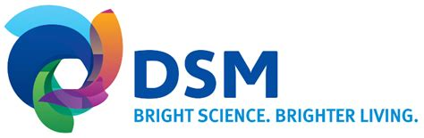 mitsubishi dsm logo dsm bright science brighter living