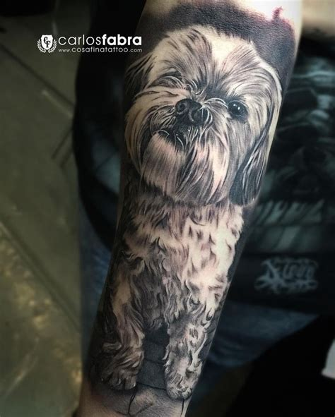 shih tzu hair pictures to pin on pinterest tattooskid