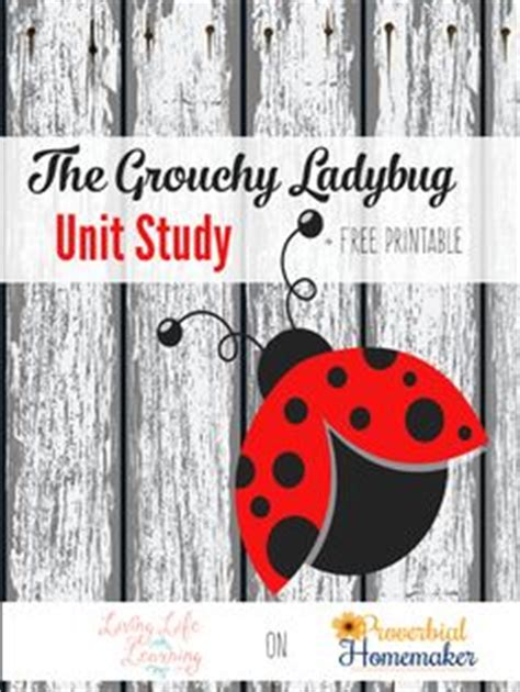 firefly story card template free ladybug printable worksheets free printables