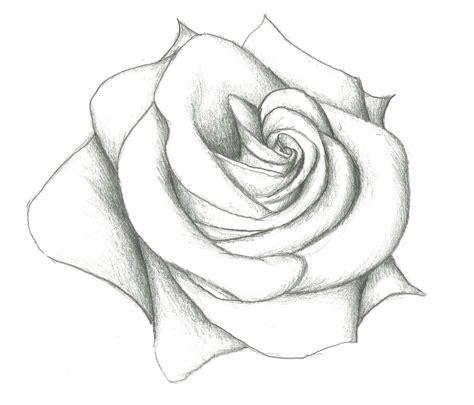 easy drawig easy drawings of roses easy pencil drawing of 12