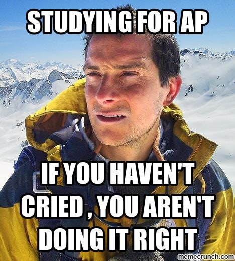 Ap Euro Memes - ms merino s advanced placement european history