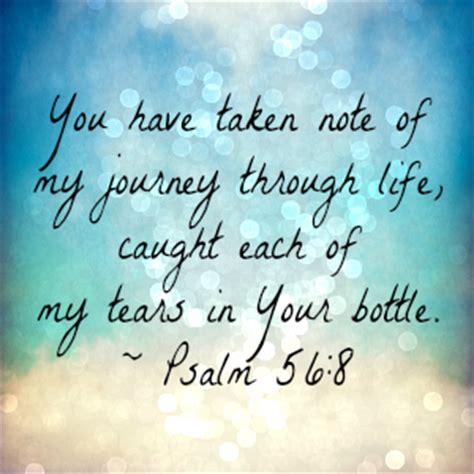 jesus every day a journey through the bible in one year books jesus weeps our sorrows faithgateway