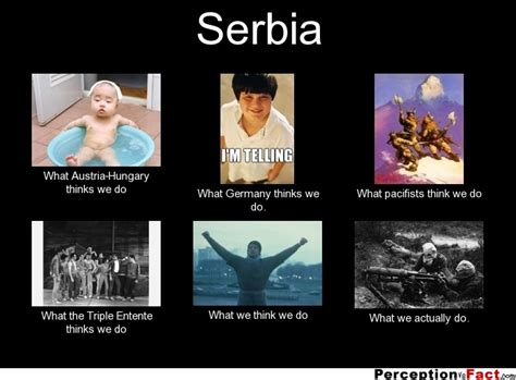 What Do Meme - serbia what people think i do what i really do