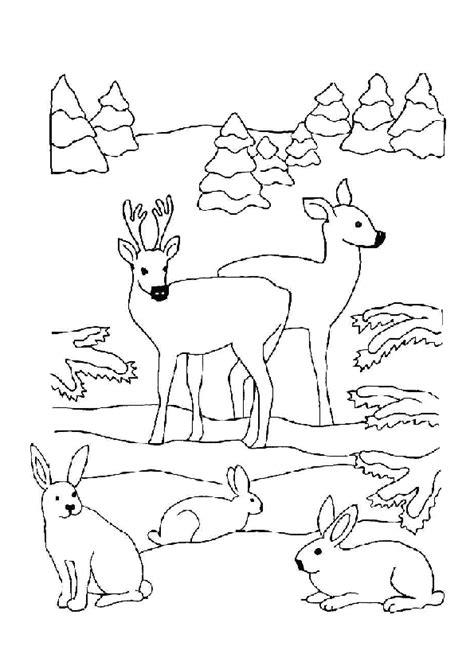 Coloriage biches lapins noel coloriage sur Hugolescargot.com