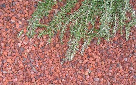lapilli per giardino la pacciamatura una tecnica per proteggere le piante