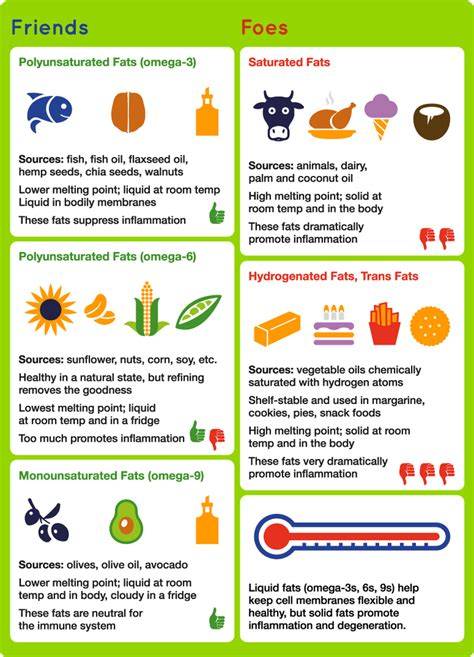 types of healthy fats types of fats overcoming sclerosis