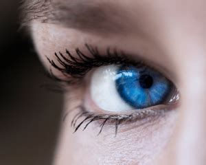 Decorative Contact Lenses by The Dangers Of Decorative Contact Lenses Tips On