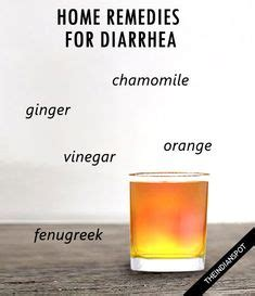 Apple Cider Vinegar Detox Diarrhea by 1000 Images About Home Remedies For Diaherrea On