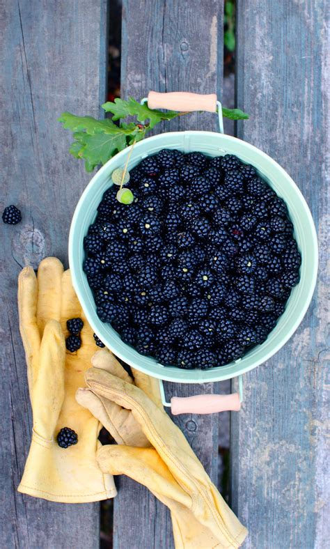 themes of blackberry picking emma watson sayou 30510945 1680 1050