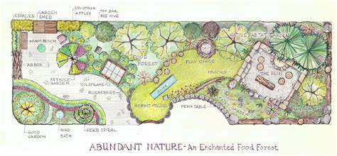 forest nursery layout plan abundant nature an enchanted food forest plant