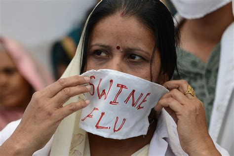 swing flu swine flu kills three in hyderabad india real time wsj
