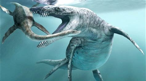 Dinosaurs In The Sea by Top 10 Quot Sea Dinosaurs Quot