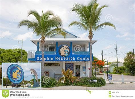 design center marathon fl dolphin research center editorial photo image 43401406