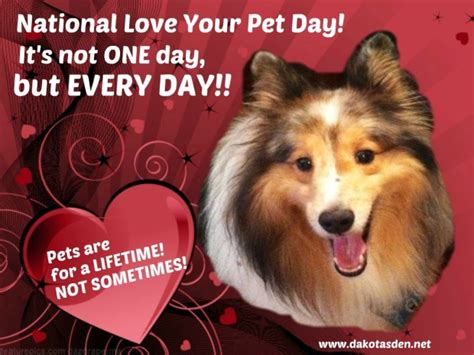 national love  pet day