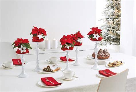 decorazioni tavolo natale stella di natale come usarla per le decorazioni natalizie