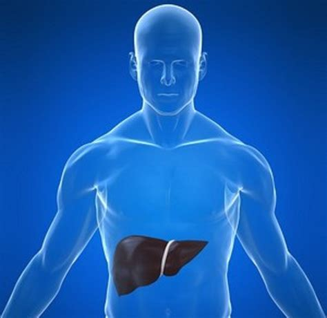 liver disease liver diseases