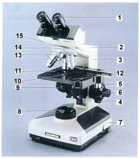 Condenser Adjustment Knob by Microscope Use