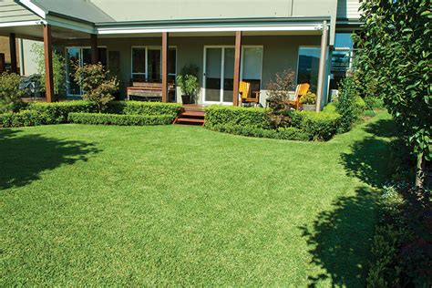how much does turf cost lawn solutions australia