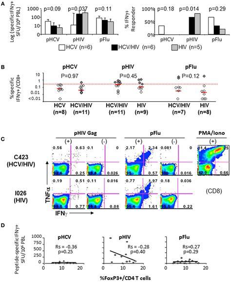 frontiers induction of regulatory t frontiers induction of immune regulatory
