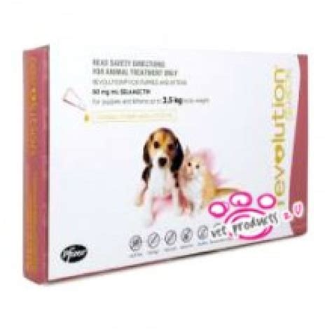 revolution for puppies and kittens revolution for puppies and kittens 3 pack only 28 70 excl gst free fast delivery
