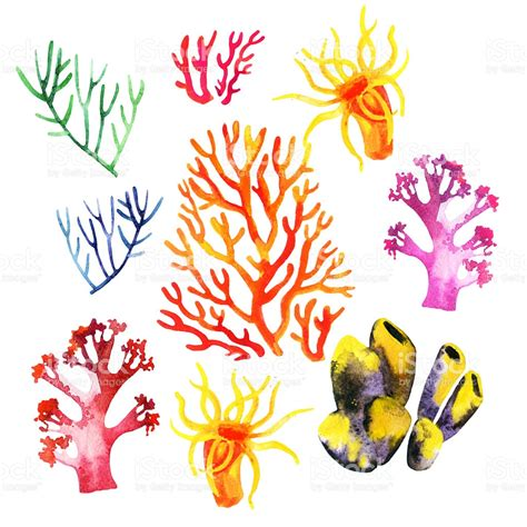 illustration of the colorful coral reefs stock vector art