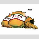 Bags of Farm Animal Feed - Scholastic Printables