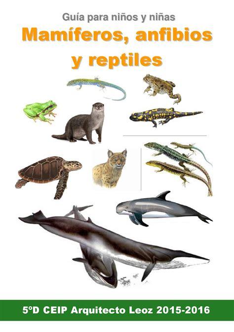 libro insectos anfibios y reptiles guia mamiferos anfibios y reptiles el libro de los ni 241 s de 5 186 d by t 233 llez mu 241 oz issuu