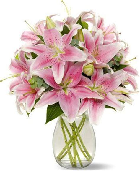 stargazer centerpieces 17 best ideas about stargazer lilies on lilies