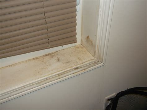 Mould Growing On Windows Designs Removing Mould From Window Frames Frame Design Reviews