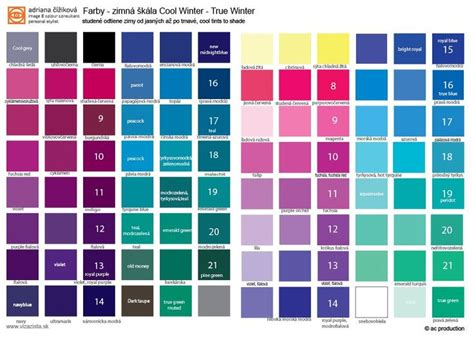 cool winter color palette cool winter palette your colours are cool from icy to