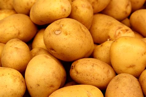Potato Pictures by Potatoes Picture Free Photograph Photos Domain