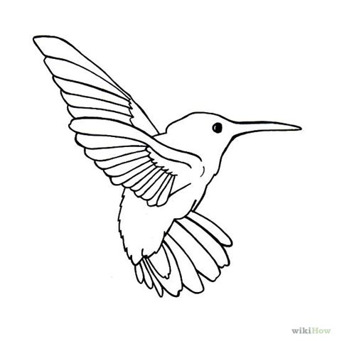 Hummingbird Outline by Bird Outline Drawing Cliparts Co