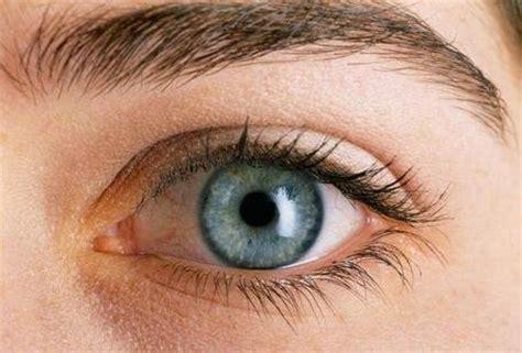 imagenes de ojos zoom la vista y sus partes para primaria imagui