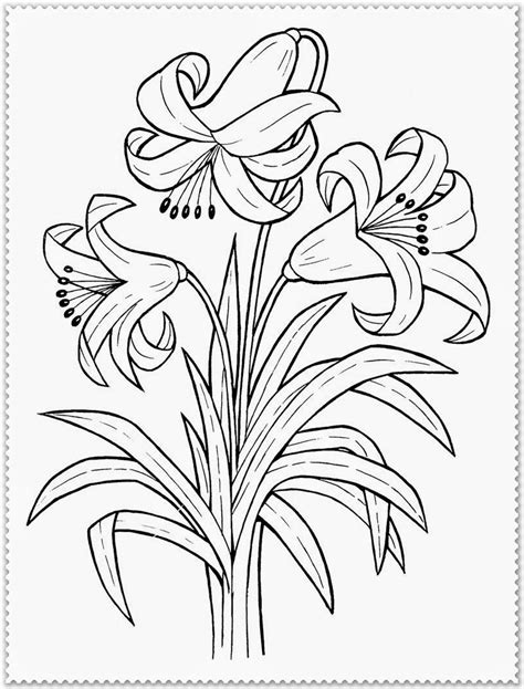Free Realistic Coloring Pages Of Flowers | spring flower coloring page realistic coloring pages