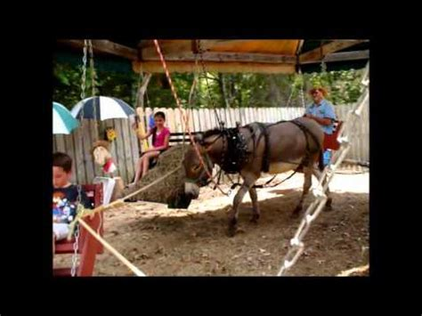 swinging donkey picnic swing donkey powered merry go round youtube